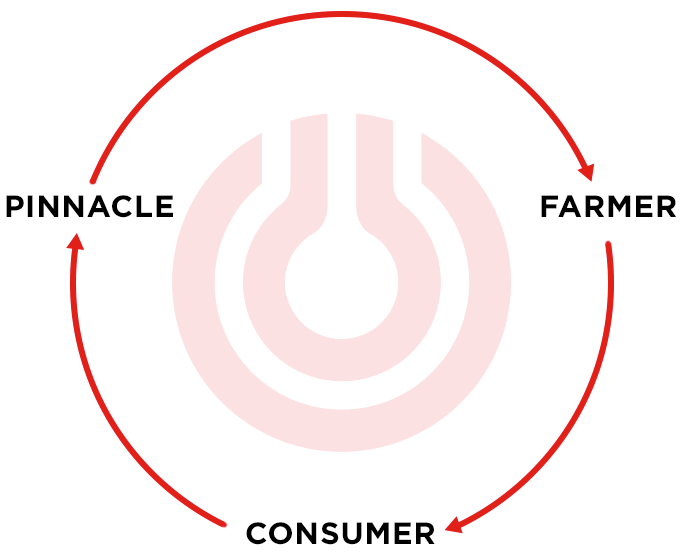pinnacle consumer farmer eco system